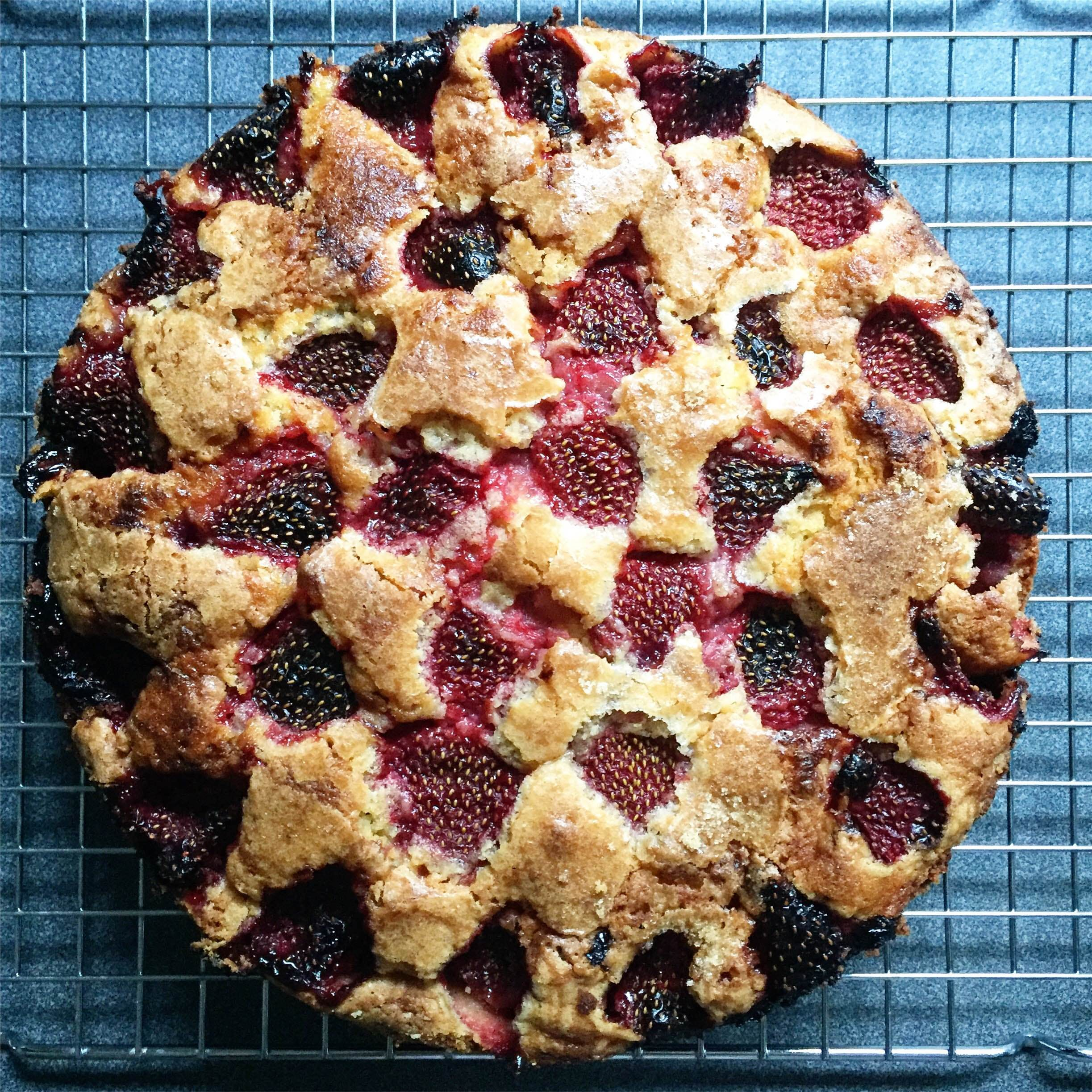 Strawberry & Blueberry Sponge Cake
