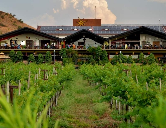 Sula Vineyards - Farmdrop Local Food Delivery
