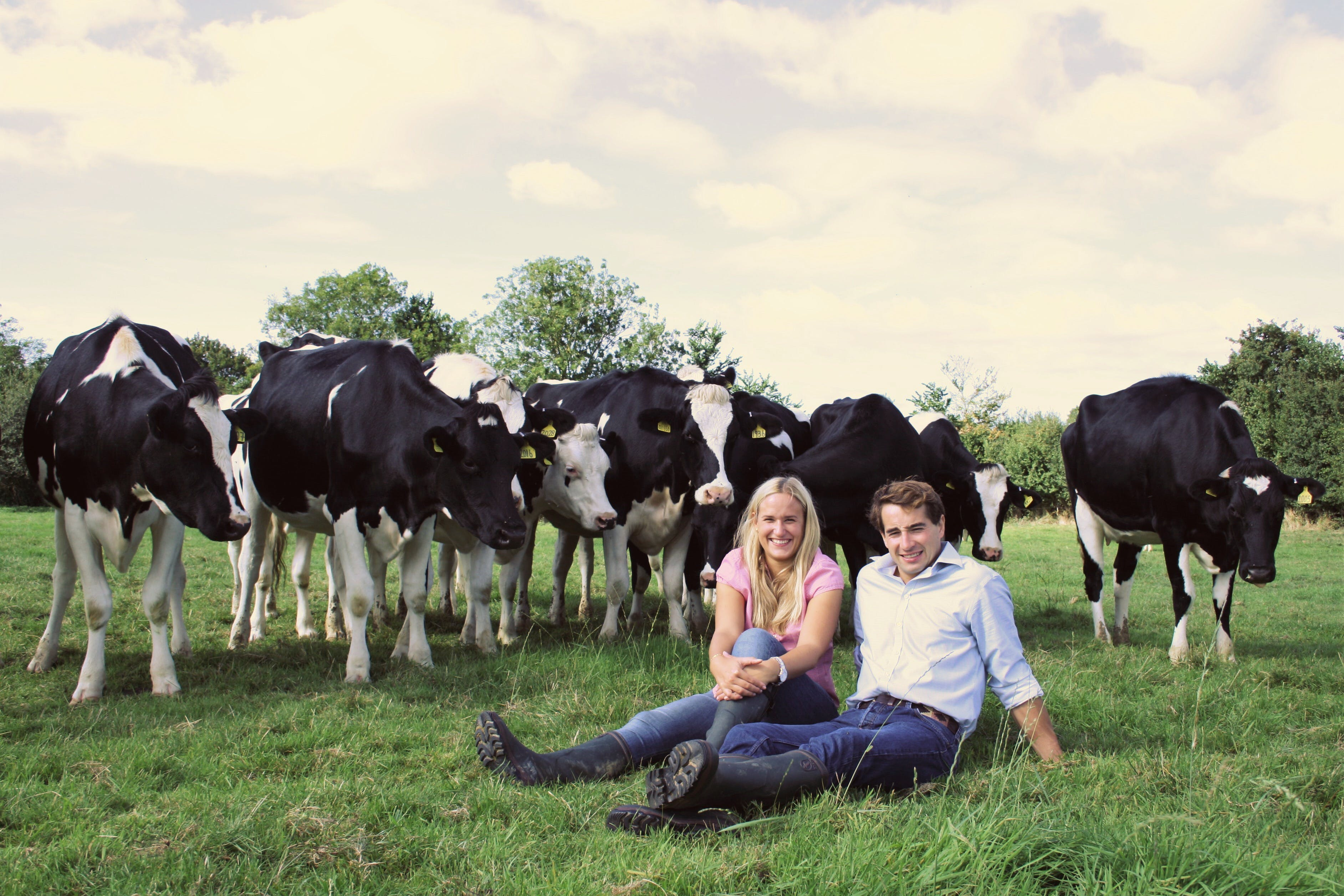The Dorset Dairy Company - Farmdrop Local Food Delivery