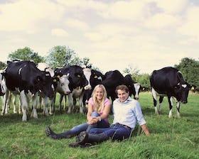 The Dorset Dairy Company