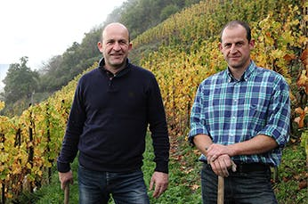 Clement & Florian Berthier - Farmdrop Local Food Delivery