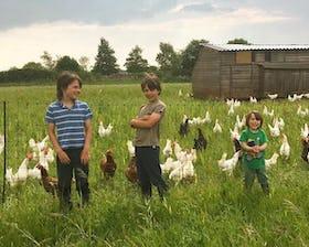 New MacDonalds Farm