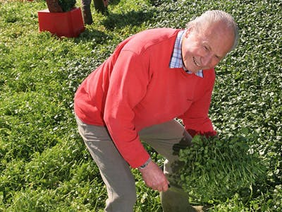 John Hurd's Organic Watercress - Farmdrop Local Food Delivery