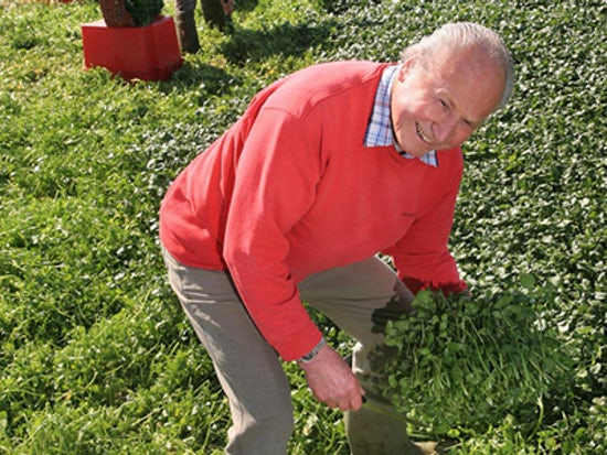 John Hurd's Organic Watercress