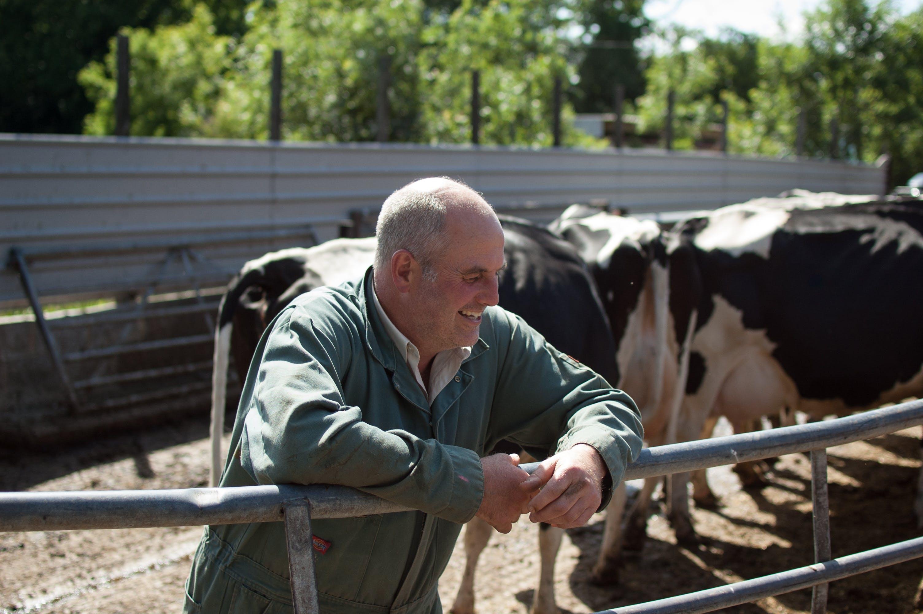 Hinxden Farm Dairy - Farmdrop Local Food Delivery