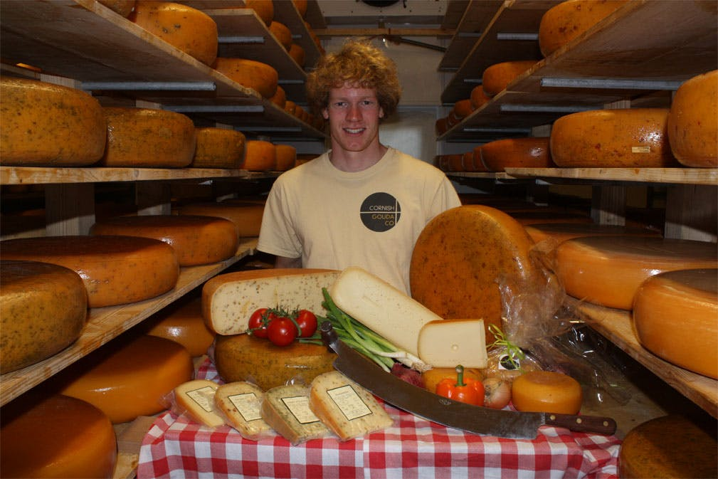 Cornish Gouda Company - Farmdrop Local Food Delivery