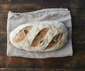 Organic Olive & Herbs Sourdough Long
