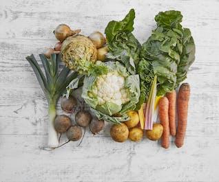 Purton Organic Small Veg Bundle