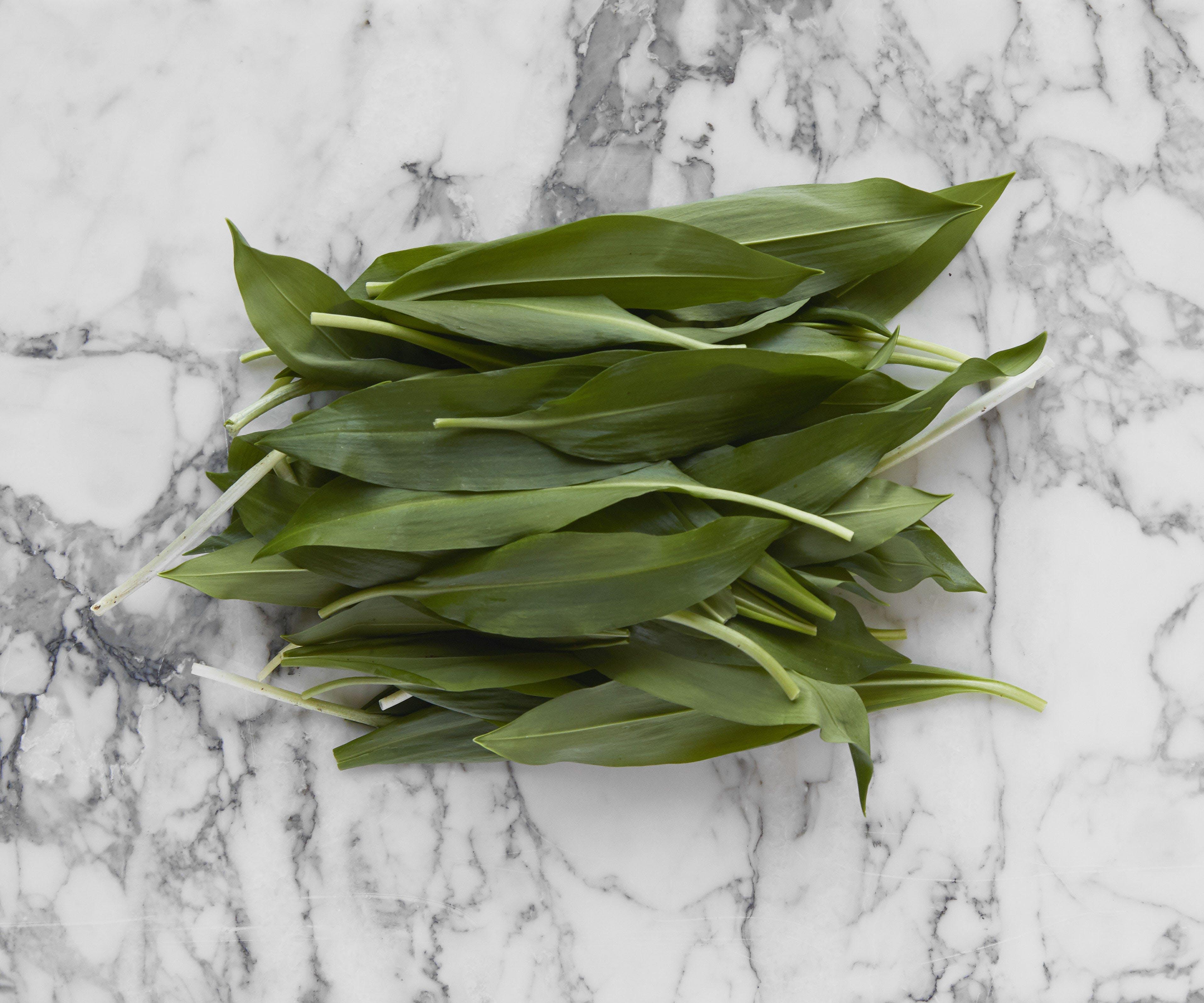 Wild Garlic (Ramsons)