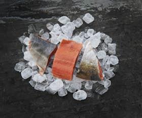 Wild Alaskan Sockeye Salmon Fillets