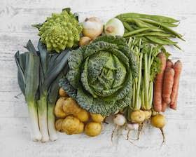 Purton Organic Family Veg Bundle