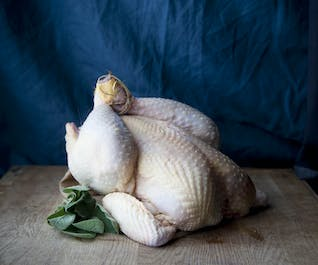 81 Day Whole Chicken
