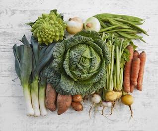 Purton Organic Family Veg Bundle (No Potatoes)