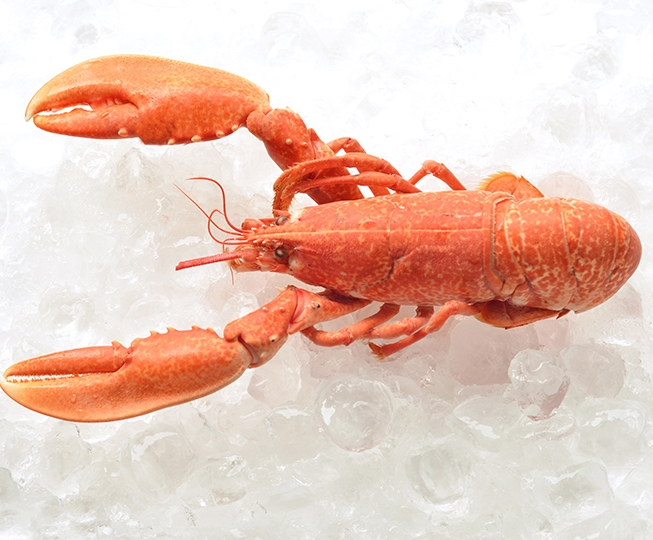 how to prepare whole lobster
