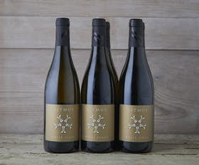 White Pinot Noir - Case