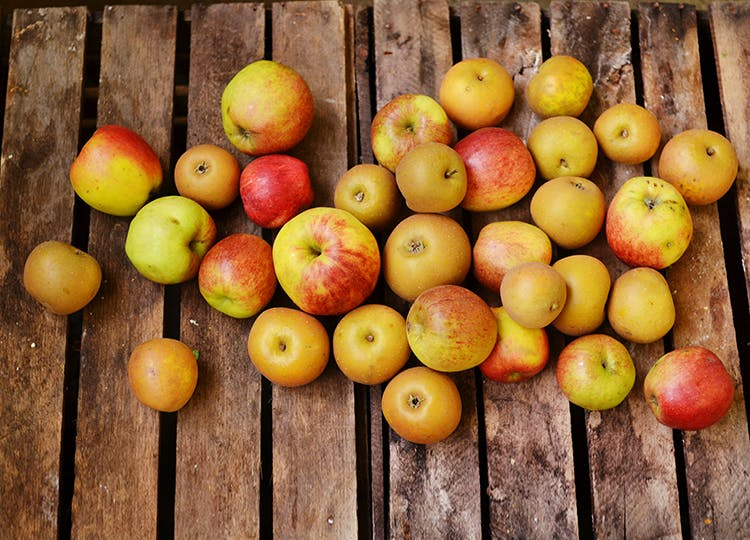 Juicing Apples (5kg)