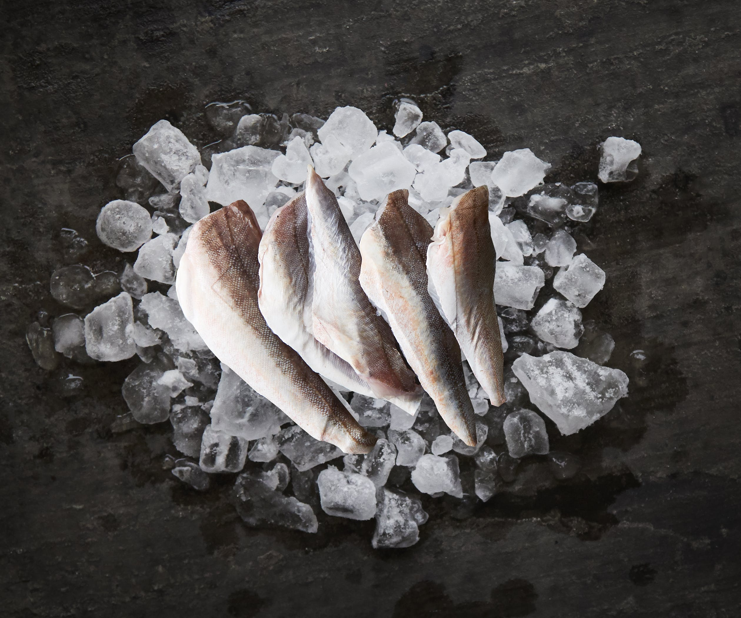 Gurnard Fillets