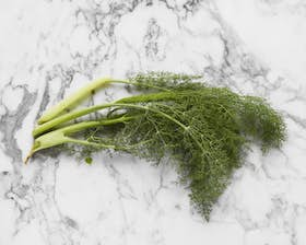Wild Fennel Leaves
