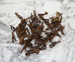 Dried Toothed Wrack Tips