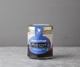 Organic Blackcurrant Yoghurt