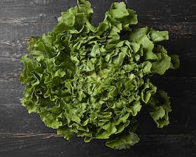 Organic Green Seasonal Lettuce Head